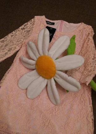 Нове плаття для принцес