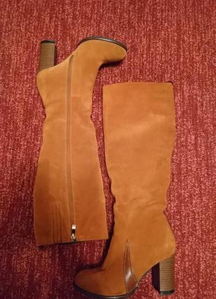 Замшевые зимние сапоги, европейка, стелька 23, высота 50, каблук 81