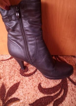 Стильные демосизонные ботинки3