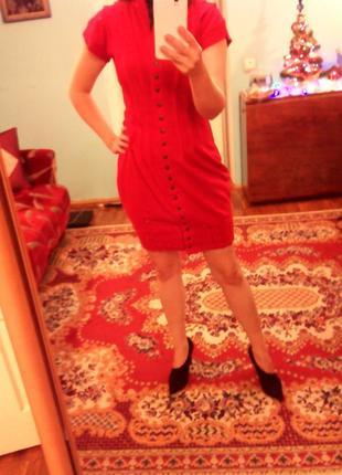 Плаття з закльопками