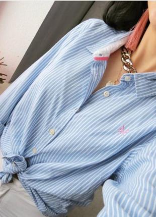 Рубашка полосатая с удлинением по спинке. рубашка в полоску1 фото