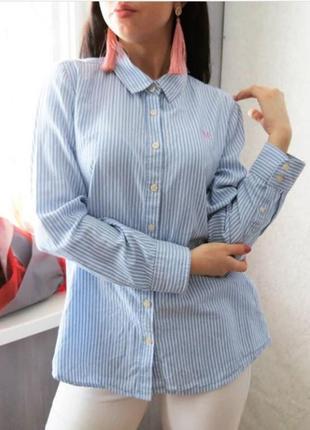 Рубашка полосатая с удлинением по спинке. рубашка в полоску3 фото