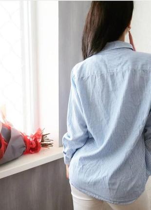 Рубашка полосатая с удлинением по спинке. рубашка в полоску4 фото