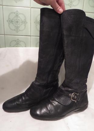 Сапоги кожа голландия durea 39,5 размер2 фото