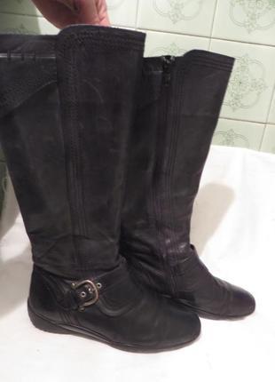 Сапоги кожа голландия durea 39,5 размер1 фото