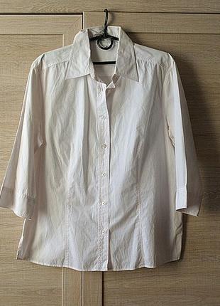Блузка рубашка белая прямая 50 52 xl xxl хлопковая хлопок летняя легкая классическая классика лето
