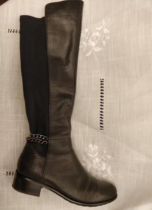 Сапоги идеально по голени на резинке до колена