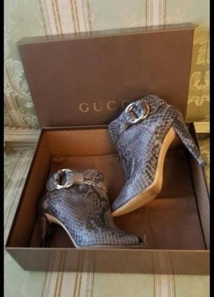 Ботинки gucci кожа питон италия