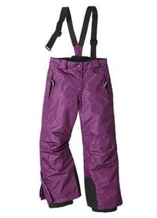 Лыжные термо штаны зимний полукомбинезон crivit