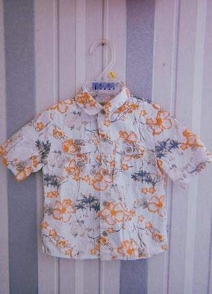 Рубашка для мальчика с принтом 18-24 мес