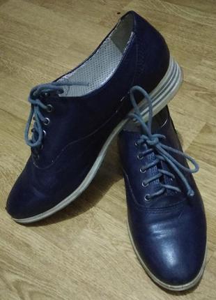 Синие классические туфли