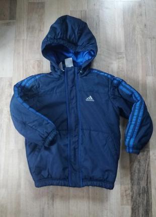 Демисезонная куртка на мальчика адидас adidas 5-6лет.