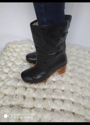 Ugg ботинки натуральная кожа