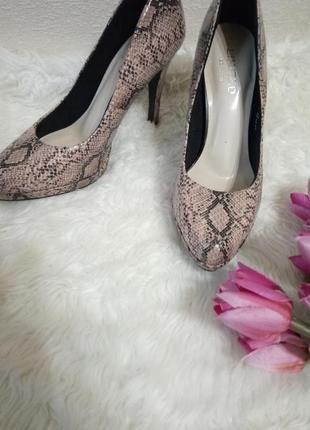 Шикарные туфли  limited cоllection