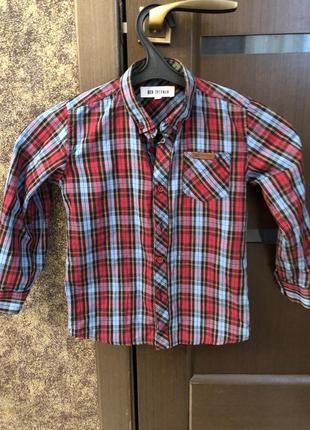 Модная рубашка ben sherman