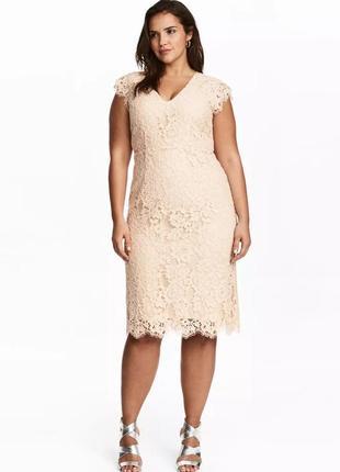 Шикарное нюдовое вечернее кружевное платье миди h&m с декольте. большой размер.