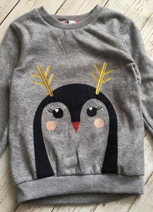 Батнік пінгвін 🐧