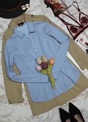 Обнова! рубашка классика приталенная в полоску бело голубая качество h&m