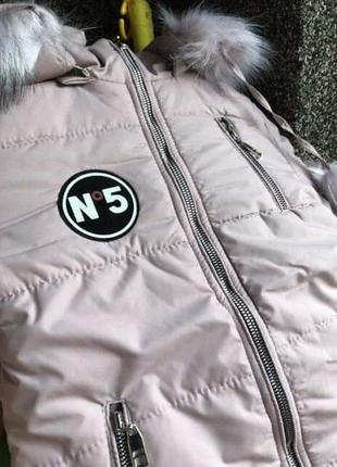 Новая курточка на овчине