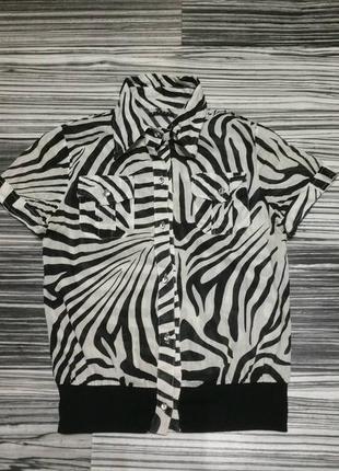 Очень красивая рубашка-блузка
