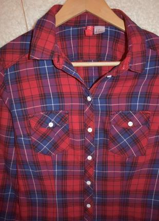 Красивая рубашка от н&м.