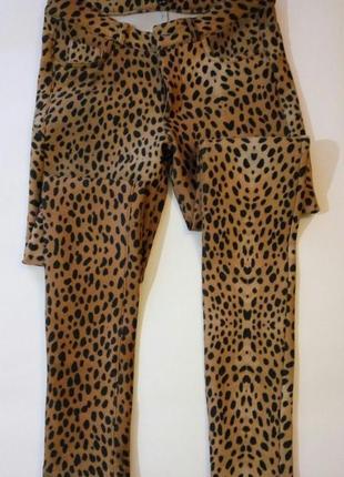 Фирменные штанишки
