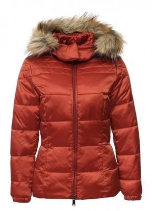 Куртка phard