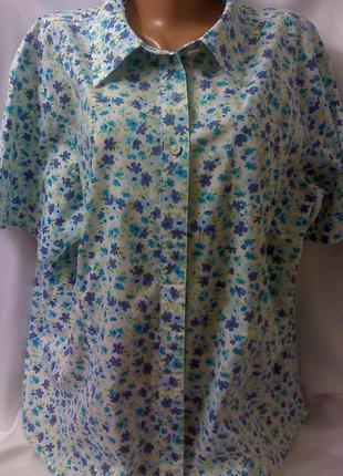 Стильная блуза рубашка большого размера