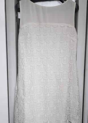 Principles ben de lisi dress кружевное молочное белое платье нарядное вечернее 14 16