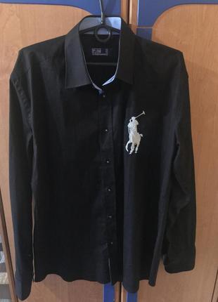 Мужская рубашка polo ralph lauren