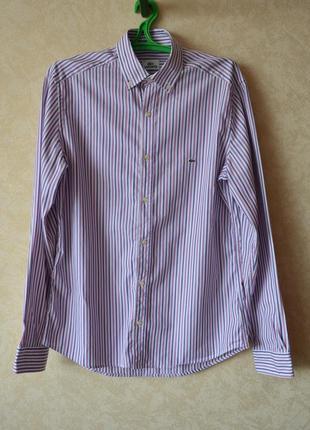 Мужская рубашка с длинным рукавом lacoste slim оригинал р 40 s /классическая  полоску