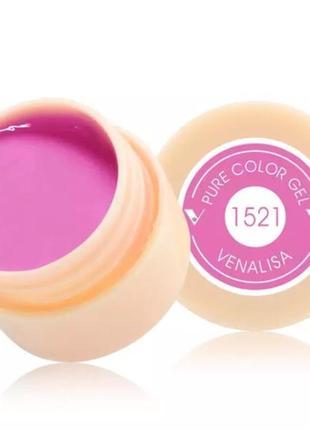 Цветной гель, гель-краска venalisa № 1521