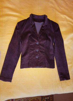Пиджак жакет вельвет темно-фиолетовый, р.s-m