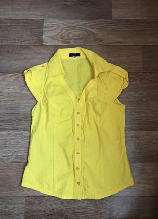 Коттоновая рубашка kenzo