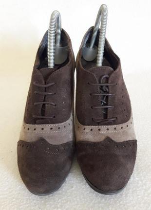 Шикарные замшевые туфли оксфорды фирмы calcats padevi ( испания) р. 38 стелька 24,5 см