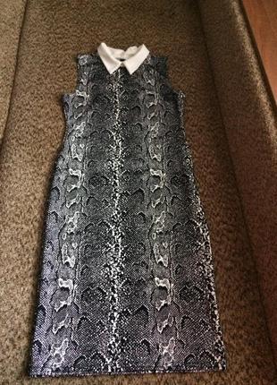 Стильное платье с контрастным воротничком