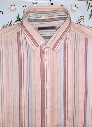 Акция 1+1=3 фирменная дизайнерская рубашка ted baker, размер 50-52, дорогой бренд