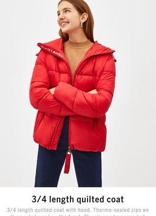Трендовая модель куртки bershka new col