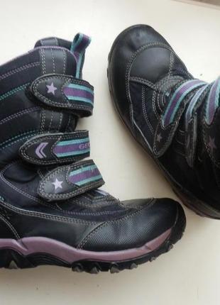 Зимние сапоги ботинки geox 35р