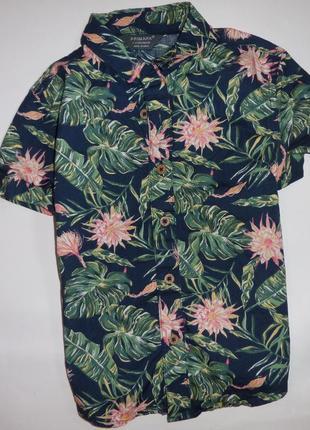 Рубашка primark 2-3 года 98 см (есть 2 шт)