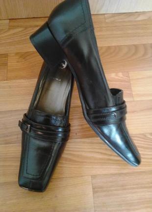 Роскошные стильные туфли лоферы 52ac70fdee1ff