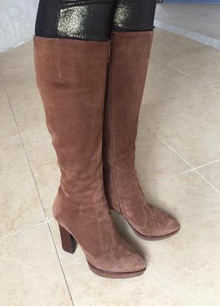 Сапоги sergio rossi ботильоны ботинки туфли оксфорды