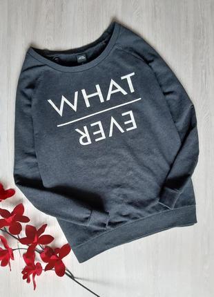 Свитшот / кофта / свитер zebra