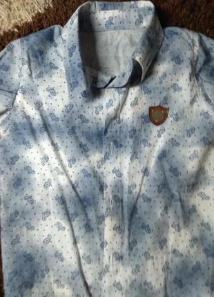 Модная рубашка, крутой принт