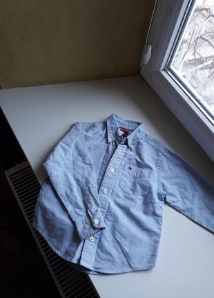 Рубашка tommy hilfiger 3