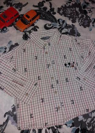 Классная рубашечка от h&m на 2-3 года