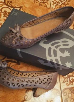 Туфлі salamande