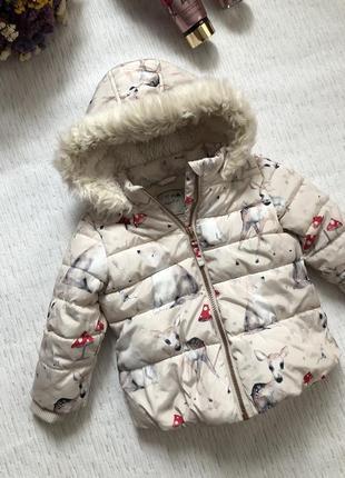 Next куртка - курточка демисезонка на девочку 12- 18 мес