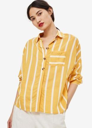 Яскрава жовта блузка в білу полоску5