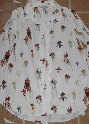Блуза h&m в состоянии новой 36